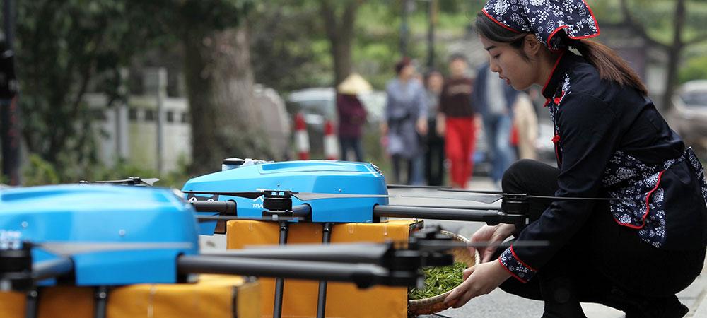 В 2018 году зеленый чай лунцзин в Китае собирали дронами